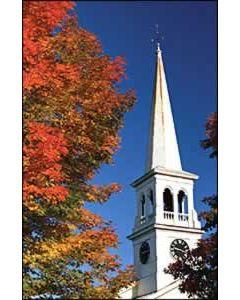 White Church Steeple Church Bulletin 9989 (pkg of 100)