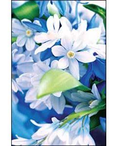 Flowers Church Bulletin 1003 (pkg of 100)