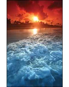 Ocean Sun Church Bulletin 1004 (pkg of 100)